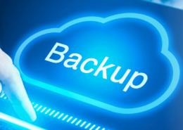 webinar backup zaltor